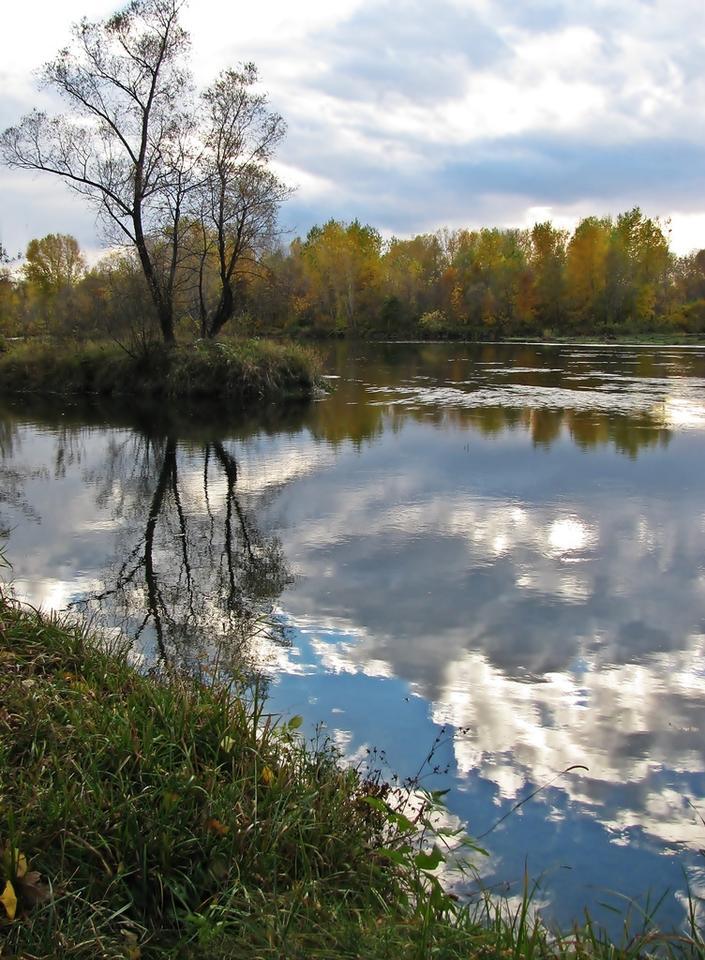 Осенние зарисовки пейзаж, осень,красота,отражения,река,остров