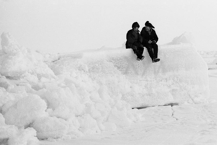 Арктика. Северный полюс. Шутка...