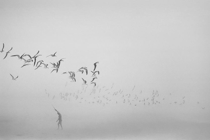 ... bw, mist, beach