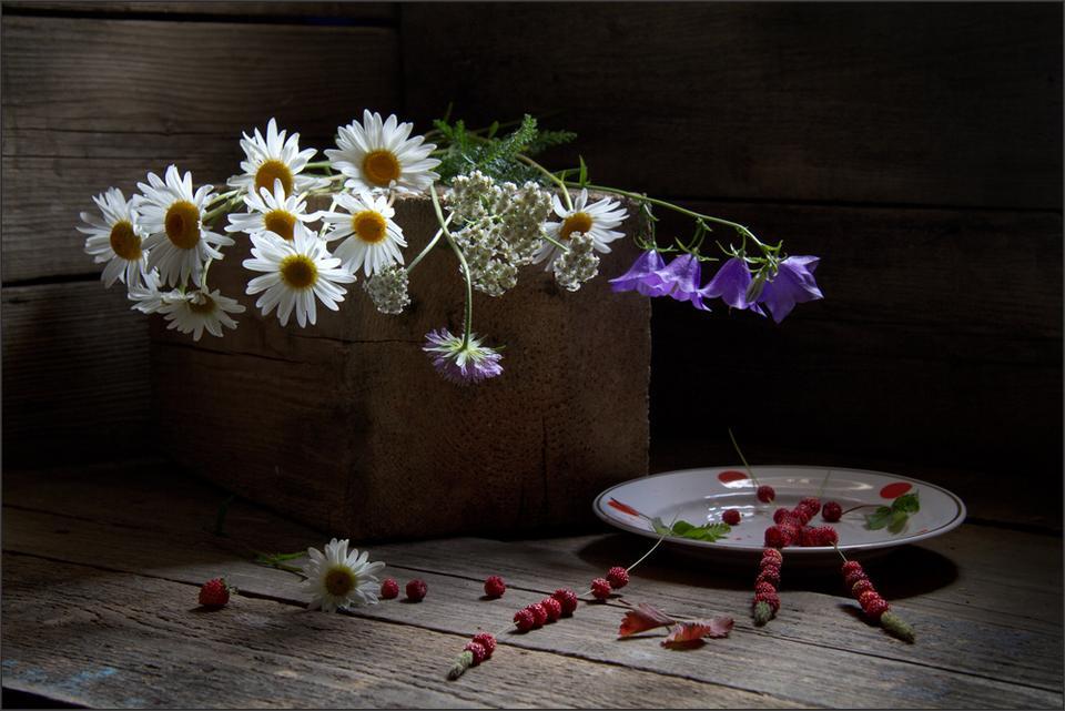 Про лето лето цветы земляника