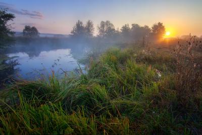 Рассвет у реки пейзаж природа туман река волчья