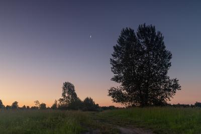 *** Утро июнь 2019 пейзаж