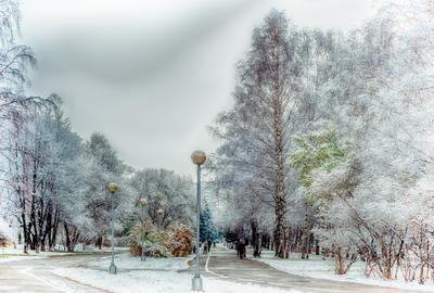 Снежная аллея...