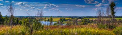 Высокий берег р. Судынка лето брянскаяобласть пейзаж природа