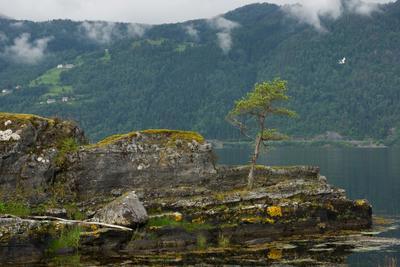 Что за страна такая Норвегия Норвегия