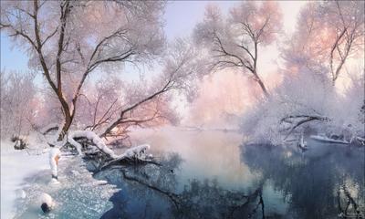 Рождественские кружева Беларусь зима Рождество Ссвислочь река