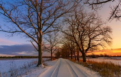 """""""Путь, время делящий"""" закат дорога даль лес деревья свет вечер снег золотой час"""