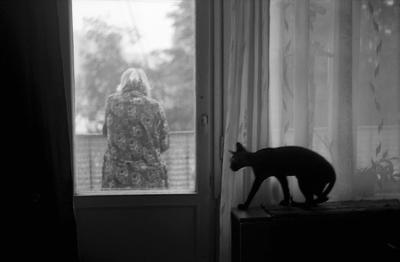 *** пленка черно-белая фотография