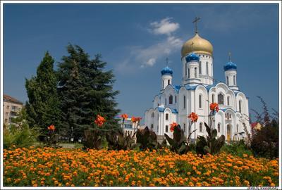 Ужгород Украина Ужгород храм купола цветы