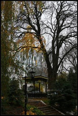 Киевские кружева Киев