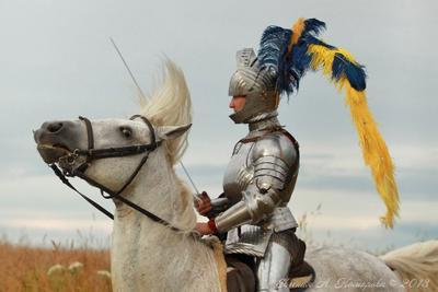 """""""А если я сделаю - ВОТ ТАК!"""" рыцарь конь челка перья"""
