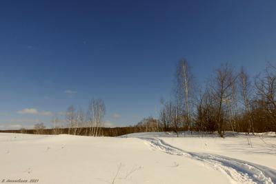 Санный путь пейзаж весна март дорога