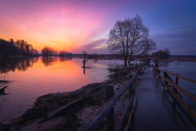 Предрассветное зарево рассвет пейзаж река утро весна заря
