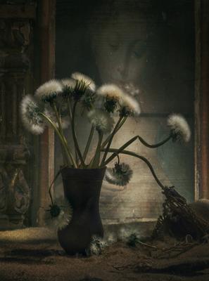 Одуванчики одуванчики натюрморт ваза картина классика стол