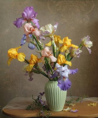 Люблю цветы, их радужные краски... Натюрморт ирисы весна букет цветов