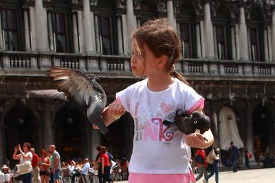 Целоваться не будем Венеция голуби сан-марко