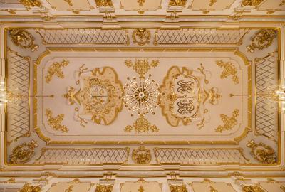 Несвижский замок (Беларусь) беларусь белоруссия замок несвиж артем мирный belarus artyom mirniy nesvizh castle ceiling ceiling-art