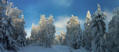 В снежном царстве. Урал