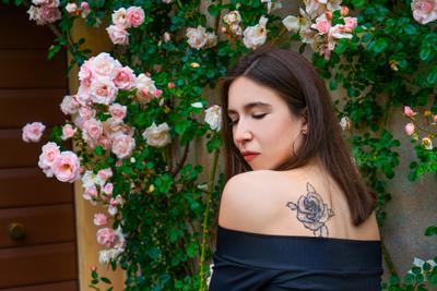 Веронские розы