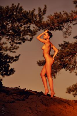 Antique konstantin skomorokh art nude константин скоморох эротика
