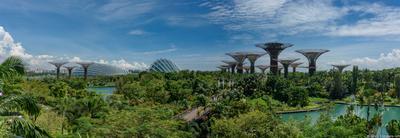 Сады у залива Сингапур Сад