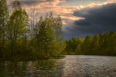 ***Весна на лесном озере Природа Подмосковья весна свежесть молодой листвы