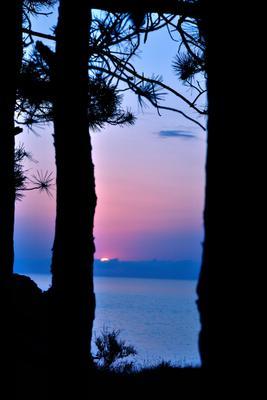 Закат на Окинаве силуэт, солнце, тучи, сосны