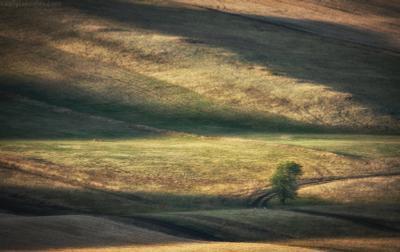Оренбургская пастораль урал фототур яковлевфототур василийяковлев долгие горы