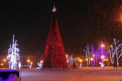 С  Новым Годом! Праздник Новый год елка