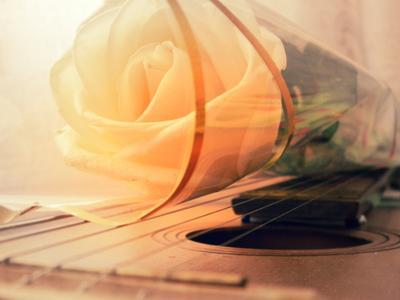 Роза на гитаре Роза гитара цветы инструмент