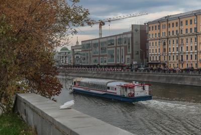 ***Уплывающее лето москва кораблик канал осень голубь
