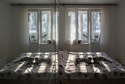 Солнечное утро Солнце утро отражение