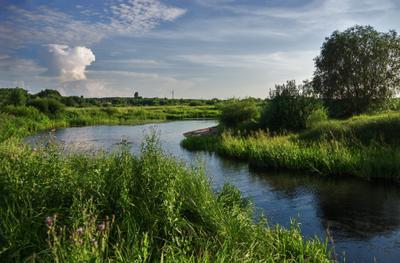 Речная свежесть летнего дня пейзаж природа лето день пригород Воронеж река Усманка облака солнце