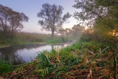 Осеннее утро на реке пейзаж волчья туман река утро