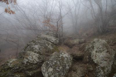 Восхождение на Демерджи в тумане Демерджи крым горы