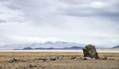 В Чуйской степи Алтай май 2019 горы