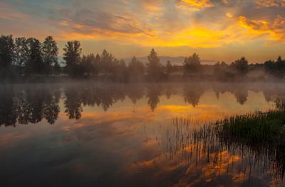 Утро утро природа рассвет пейзаж