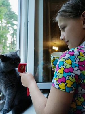 - Позвольте вас причесать? Общение общение с животными котом кот и человек девочка чесалка для кота окно открытое лето котик нюхает ребёнок дети животные знакомство девочки серый на окне сцена у окна