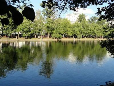 Озеро пезаж природа паркимосквы