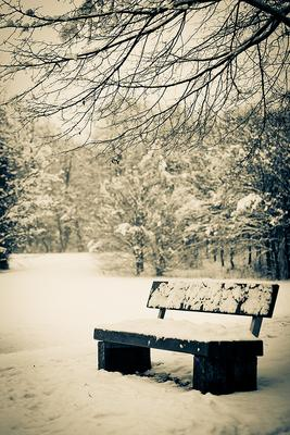 Зимний сон...