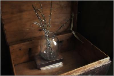 ...... Верба..... предметы свет идея гармония композиция