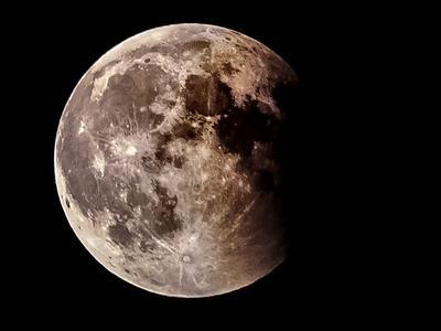 ***moon moon
