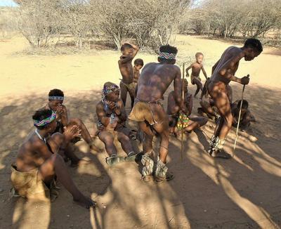 Бушмены южной Африки африка намибия бушмены