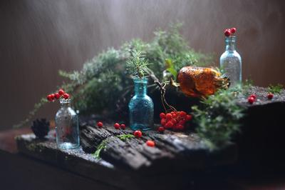 Снова дождь рисует мне. бутылочки рябинка шишки можжевельник вода