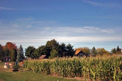Осенью в Новой Англии