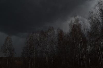 ***Быть дождю... дождь весна