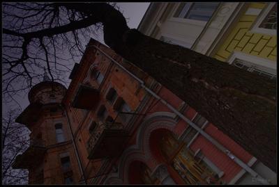 Киевская готика Киев