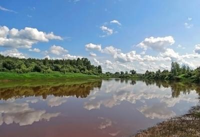 Речушка Сибирь лето река Томская область Июль 2019
