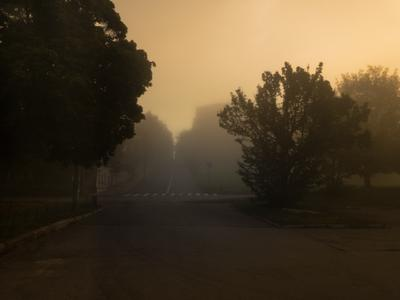 Туманное утро в Калуге