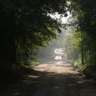 * Красное Село СПб